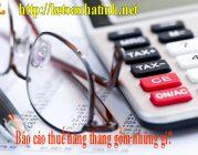 Báo cáo thuế hàng tháng gồm những gì?